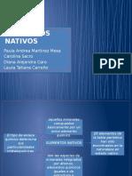 Elementos Nativos Geologia
