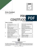 PRINCIPIOS DE DERECHO CONSTITUCIONAL
