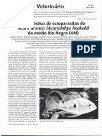 Diagnóstico de Ectoparasitas Do Acará Branco (Acarichthys Heckehl) Do Médio Rio Negro (AM) - Lemos Et Al., 2011
