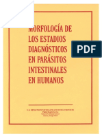 intestinals.pdf