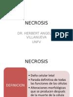 Necrosis 1