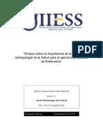 ENSAYO IMPORTANCIA DE SOCIOANTROPOLOGIA.docx