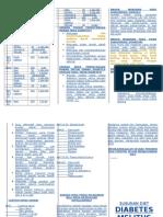 Leaflet DM 2100