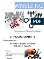 Downsizing- Diapositivas.pptx