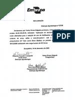 Certificado Brasil