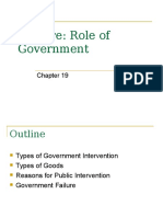 Role Government