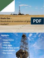 shalegas-revolutionorevolution-121104101340-phpapp01.pdf