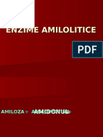Curs 8 Enzime Amilolitice