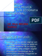 01 Descripcion de La Anatomia Pelvica Normal ETV Por Ecografia Tran 1