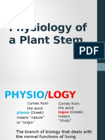 Physiology of a Plant Stem