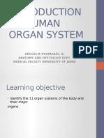 pengantar system organ.pptx