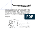 Manual de Encerado de Anatomia Dentald