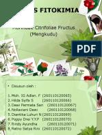 PPT Fitokimia Shift B1 Kelompok 1-1