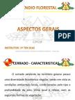 Incêndio Florestal - Aspectos Gerais - CHOA 2016