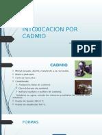 Intoxicacion Por Cadmio