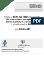 sebrae.pdf