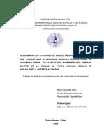 gonzalez_soto_2009 (1).pdf