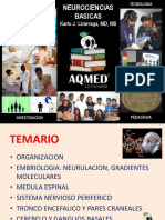 16 Neurociencias Escuelita AQMED 2016 CsBasicas