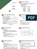 PAA - Metodo Guloso