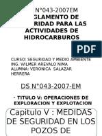 ds n043-2007 em