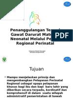 Pelayanan Perinatal Regional