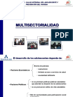 8.Multisectorialidad GTZ