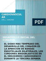 Sistema Cardiovascular 2014