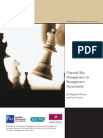 CIMA Mag Financial Risk Jan09