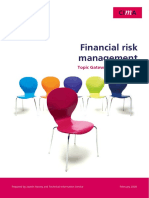 CIMA Tg Fin Risk Mgmt May08.PDF