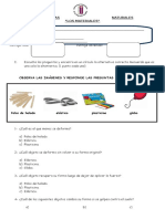 Evaluación de Ciencias Naturales Los Materiales