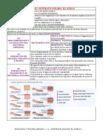 113_TEMA_1.1.3_SUSTRATO.pdf