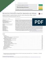 Bioconversion of natural gas to liquid fuel