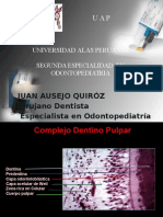 Dr Ausejo, Proteccion Dentino Pulpar