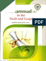 Muhammad in the Torah and Gospel