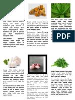 Leaflet Tanaman Obat