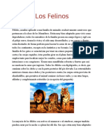 Los Felinos.docx