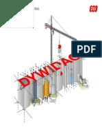DSI Presentation