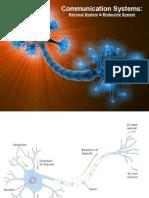 3  communication systems  nervous system   endocrine system  ppt