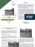 BOLETIN DE CAMU CAMU III.docx