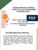sistema nervioso central respecto a las capacidades coordinativas.pptx