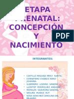 ETAPA-PRENATAL-diapositivas...definitivo.pptx
