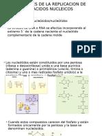 Inhibidores de La Replicacion de Los Acidos Nucleicos