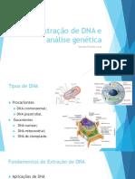 Aula 3 Extra o de DNA e an Lise Gen Tica Val