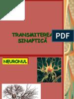 136883562-Transmiterea-sinaptica