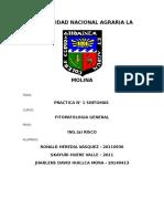 1er Informe de Fitopato
