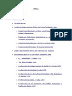 derechos-fundamentales.docx