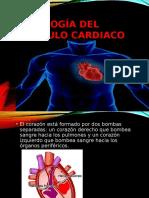 Fisiología Del Musculo Cardiaco