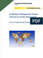 MANUAL BMS.pdf