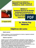 Curso Especializacion Der Amb GORE Ayacucho Módulo I P Foy 15 08 2016 (1)