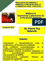 Curso Especializacion Der Amb GORE Ayacucho Módulo III P Foy 19 08 2016